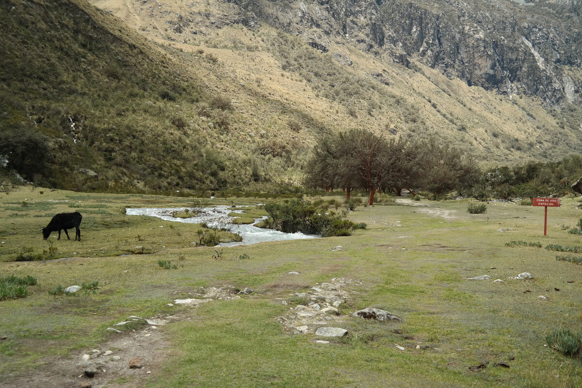 Nationalpark Huascaran - Hike to Laguna